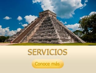 02_constellation_services_servicios